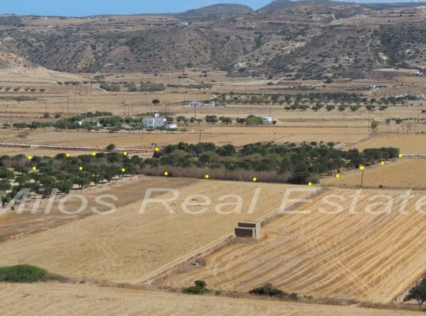 Land for sale 11.450 m2, Livadia, Milos