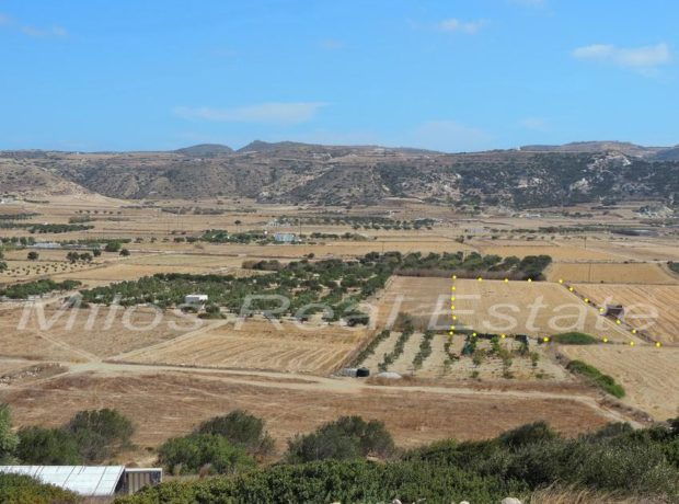Land for sale in Milos, 8.200 m2