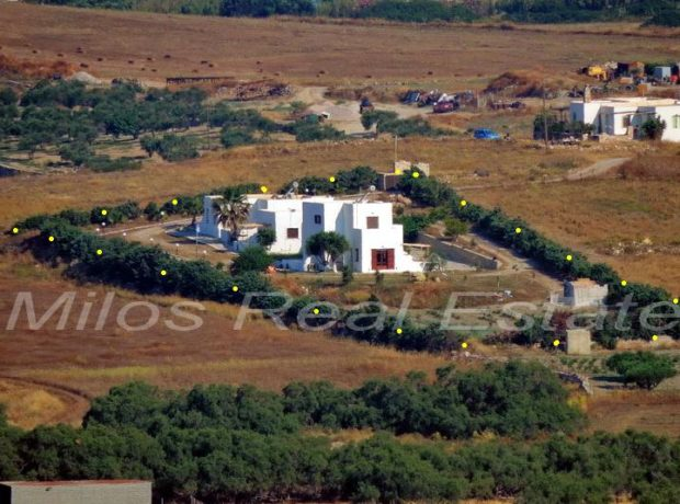 Three Houses for Sale, 266 m2