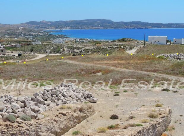 Land for sale, 4313 m2