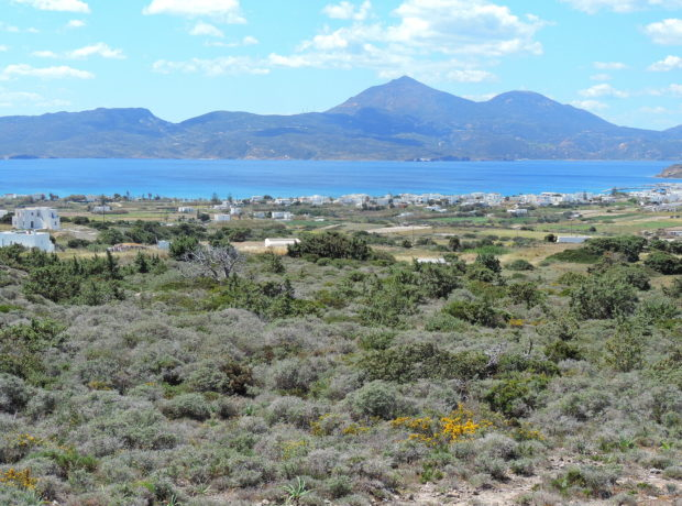 Terreno in vendita, 6900 m2